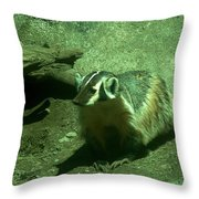 Wandering Badger Throw Pillow by Jeff Swan