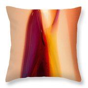 Wanting More Throw Pillow by Omaste Witkowski
