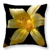 Warm Glow Throw Pillow by Rona Black