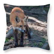 Wary Fox Throw Pillow by Bianca Nadeau