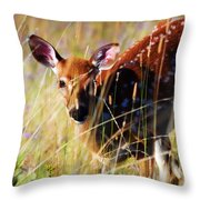 Wary Throw Pillow by Heather Applegate
