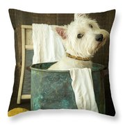 Wash Day Throw Pillow by Edward Fielding