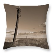 Watching Over The Sea King Throw Pillow by Mark Miller