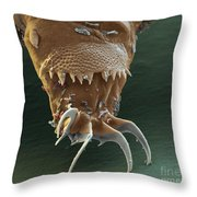 Water Bear Leg Throw Pillow by Eye of Science and Science Source