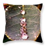 Water Drops Leaf Throw Pillow by Daniel Janda