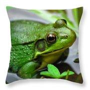 Water Garden Throw Pillow by Christina Rollo