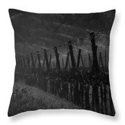 Water Into Wine Throw Pillow by Bill Gallagher
