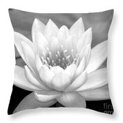 Water Lily In Black And White Throw Pillow by Sabrina L Ryan