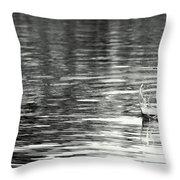 Water Throw Pillow by Prajakta P