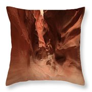 Water Sculpted Curves Throw Pillow by Adam Jewell