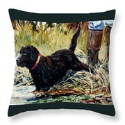 Water's Edge Throw Pillow by Molly Poole
