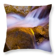 Waters Of Zion Throw Pillow by Adam Romanowicz