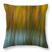 Wavy Throw Pillow by Randy Pollard
