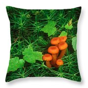 Wax Cap Fungi Throw Pillow by Jeff Lepore