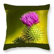 Wearing A Purple Crown - Bull Thistle Throw Pillow by Mark E Tisdale