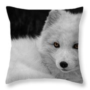 Wee Arctic Hunter D3613 Throw Pillow by Wes and Dotty Weber