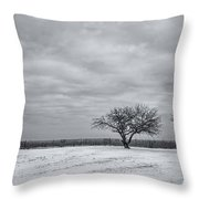 Weeping Souls Of Winter Desires Throw Pillow by Evelina Kremsdorf