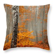 Welcome To Orange Forest Throw Pillow by Evgeni Dinev
