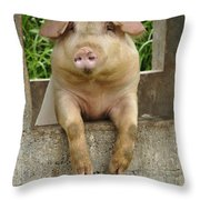 Well Hello There Throw Pillow by Bob Christopher
