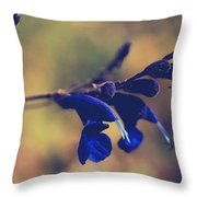 We're Two Of A Kind Throw Pillow by Laurie Search