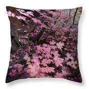 West Fork Fall Colors Throw Pillow by Dave Dilli