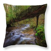 West Humbug Creek Throw Pillow by Everet Regal