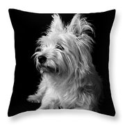 Westie Throw Pillow by Catherine Reusch  Daley
