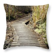Wetland Walk Throw Pillow by Les Cunliffe