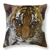 What A Face D3875 Throw Pillow by Wes and Dotty Weber