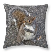 What You Looking At? Throw Pillow by Joann Vitali
