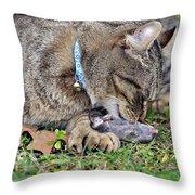 What's For Dinner Throw Pillow by Susan Leggett