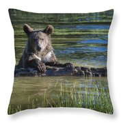 What's Mine Is Mine Throw Pillow by Sandra Bronstein