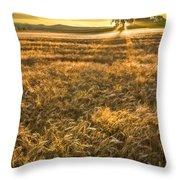Wheat Fields Of Switzerland Throw Pillow by Debra and Dave Vanderlaan