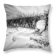 When The Wind Blows Throw Pillow by John Farnan