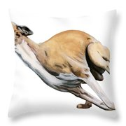 Whippet In The Wind Throw Pillow by Liane Weyers