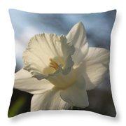 White Daffodil Throw Pillow by Jennifer Doll