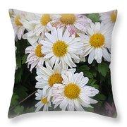 White Daisies Throw Pillow by Kay Novy