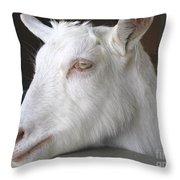 White Goat Throw Pillow by Ann Horn