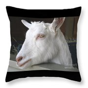 White Goat Throw Pillow by Ann Horn