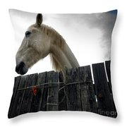 White Horse Throw Pillow by Bernard Jaubert