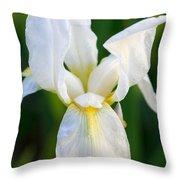 White Iris Throw Pillow by Joan Bertucci