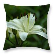 White Lily Throw Pillow by Sandy Keeton