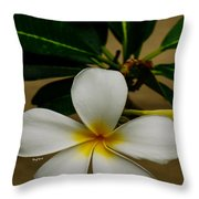 White Plumeria 2 Throw Pillow by Cheryl Young