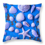 White Sea Shells On Blue Board Throw Pillow by Garry Gay