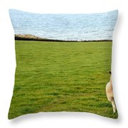 White Sheep In A Green Field By The Sea Throw Pillow by Georgia Fowler