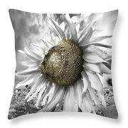 White Sunflower Throw Pillow by Debra and Dave Vanderlaan