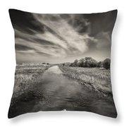 White Swan Throw Pillow by Dave Bowman