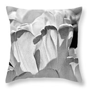 White Tulip Throw Pillow by Marty Koch