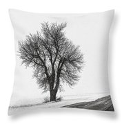 Whiteout Throw Pillow by Chris Austin