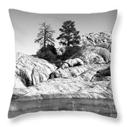 Willow Lake Number One Bw Throw Pillow by Heather Kirk